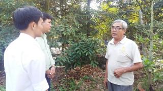Người cao tuổi tích cực tham gia xây dựng nông thôn mới