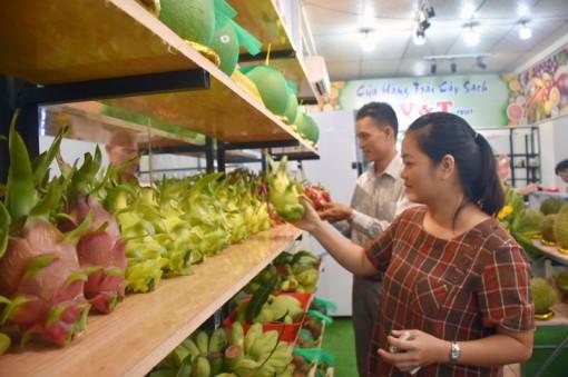 Khai trương cửa hàng trái cây sạch, VietGAP