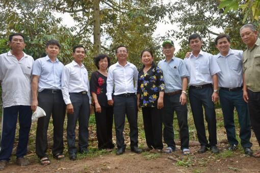 Châu Thành phát triển chuỗi giá trị nông sản chủ lực