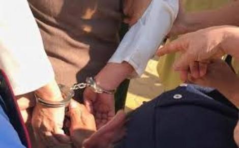 Sử dụng tài liệu giả, lừa đảo chiếm đoạt tài sản, bị phạt 2 năm 6 tháng tù