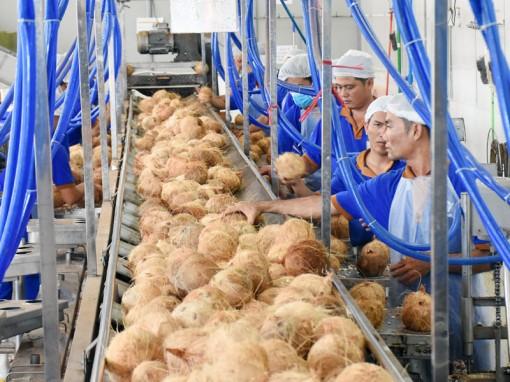 Kinh tế nông nghiệp qua 5 năm phát triển