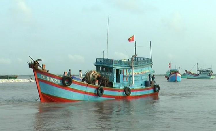 Bình Đại có trên 1,2 ngàn tàu đánh bắt thủy sản