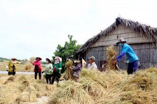 Tập trung phát triển kinh tế hợp tác, hợp tác xã