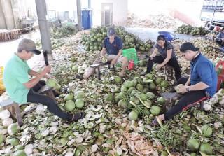 Hữu Định duy trì nâng chất tiêu chí xã nông thôn mới