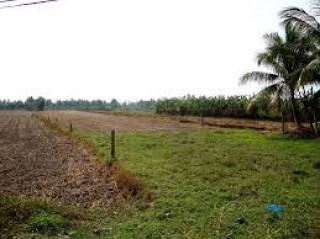 Quy định về xác định ranh giới thửa đất