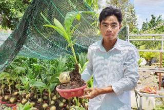 Chợ Lách: Sôi nổi các ý tưởng khởi nghiệp từ thanh niên nông thôn