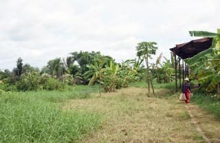 Xây dựng hồ chứa nước ngọt Lạc Địa phục vụ người dân