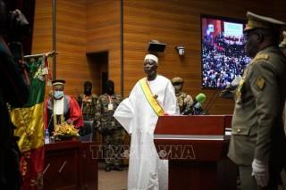 Ông Ba N'Daou tuyên thệ nhậm chức Tổng thống lâm thời Mali