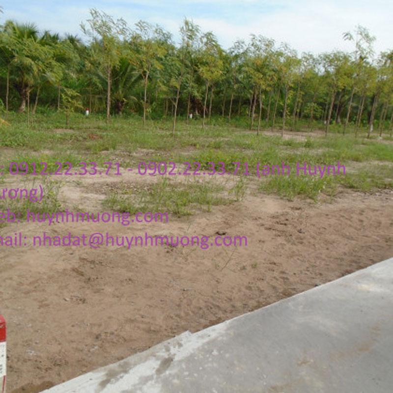 Bán đất nền thuộc xã Phú Nhuận, chiều ngang 7m, giá 188 triệu đồng/nền